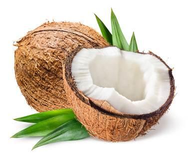 BIO Kokosprodukte