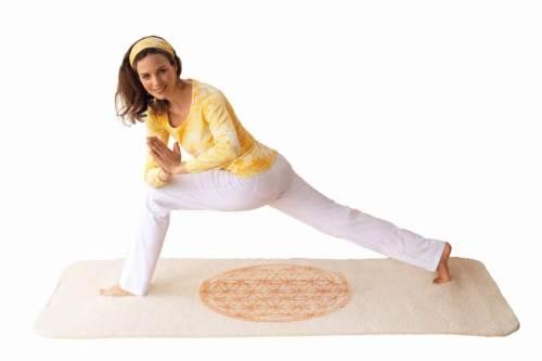 Yogamatten und Yogazubehör
